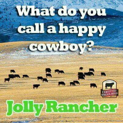 What Do You Call A Happy Cowboy Jolly Rancher Cheesy