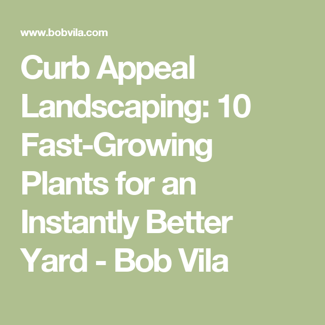 Curb Appeal Landscaping: 10 Fast-Growing Plants for an Instantly Better Yard - Bob Vila