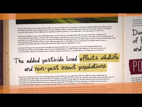 The Alarming Truths About Genetically Modified Foods