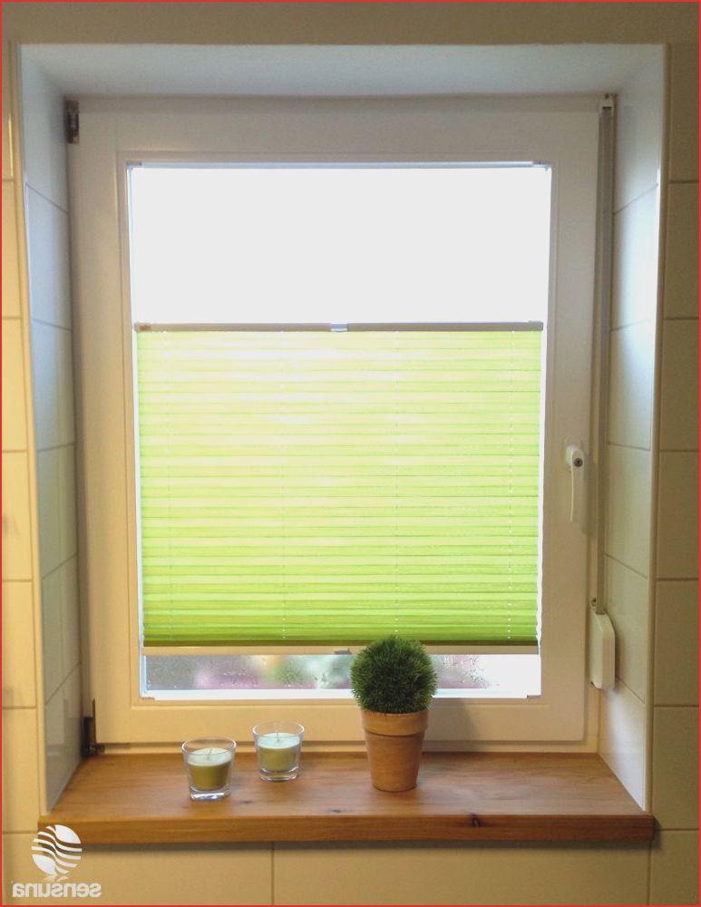 Garten Meinung 29 Das Beste Von Balkon Sichtschutz Rollo