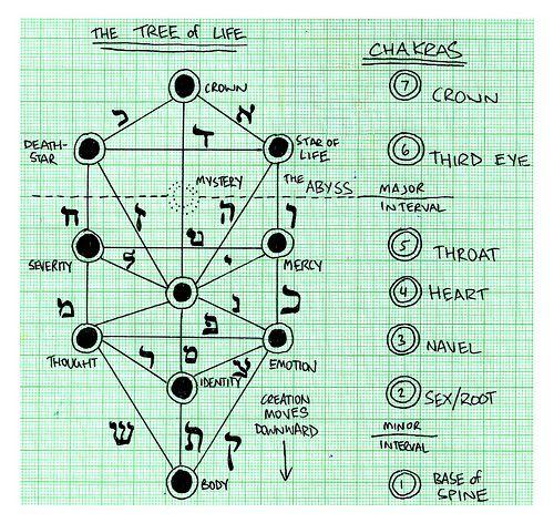 Chakra and tree of life diagrams httppilatesforfitness chakra and tree of life diagrams ccuart Gallery
