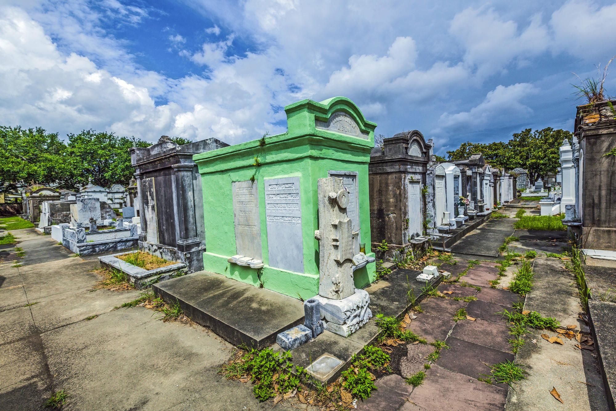 A tribute to New Orleans from a local who really knows it