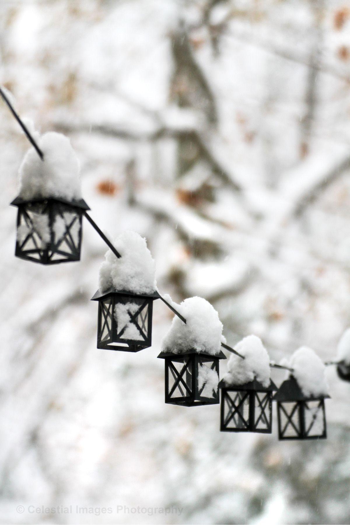 "celestialphotography: ""Winter aesthetic "" | Winter ..."