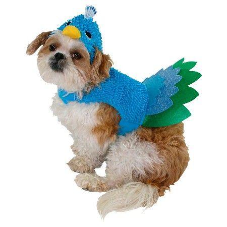 Expect More. Pay Less. Blue BootsPet CostumesCostume ...  sc 1 st  Pinterest & Halloween Peacock Pet Costume : Target   Pet Costumes   Pinterest ...