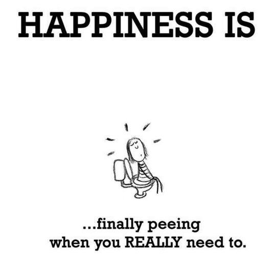 The True Meaning Of Happiness Funny Quotes Happy Quotes Happiness Meaning