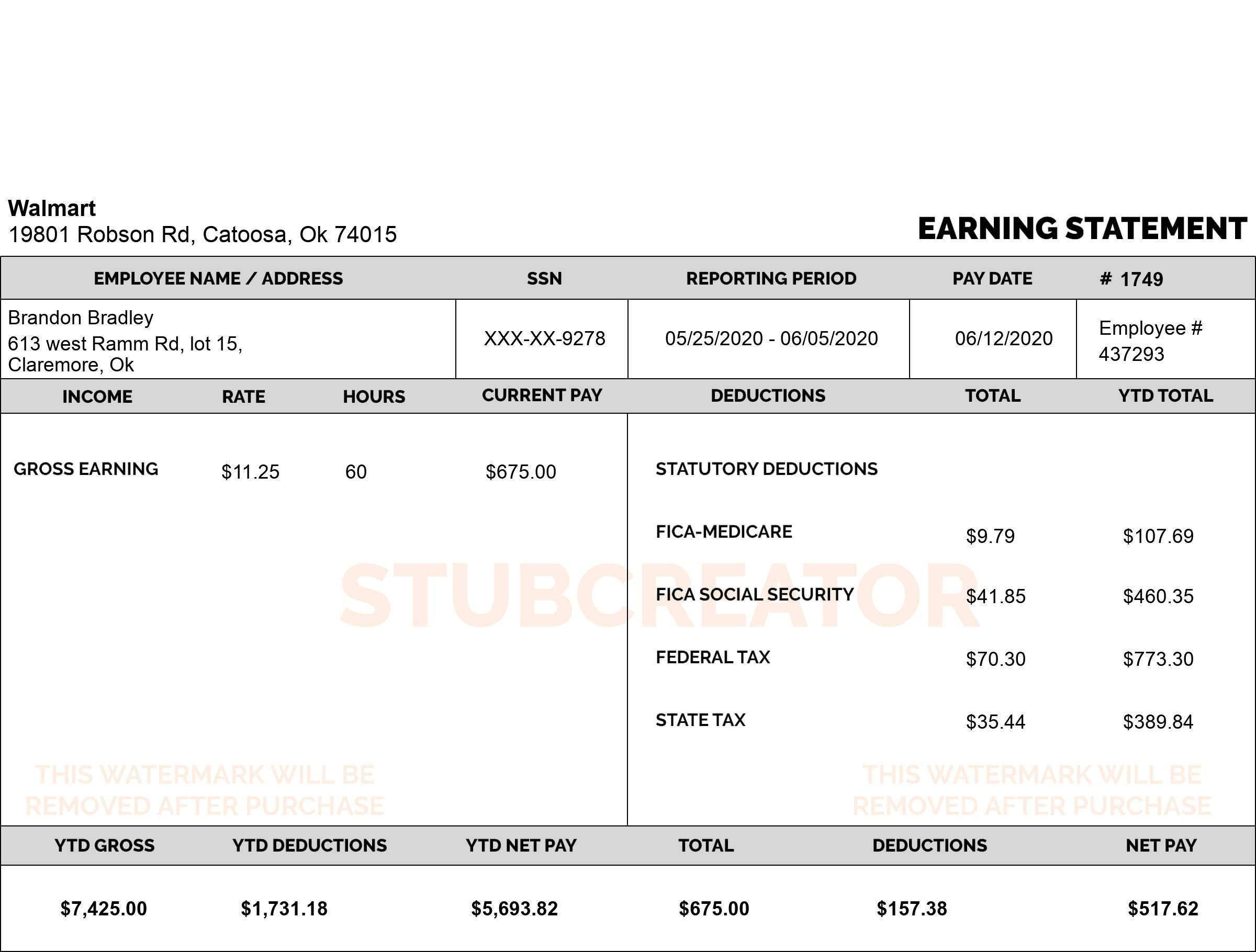 Free Pay Stub Generator Online Check Stub Maker Free Download Stubcreator Payroll Template Online Checks Free Checking Free download pay stub template