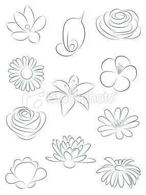 Set Of Flowers Vector Illustration Flower Drawing Drawings Art Drawings