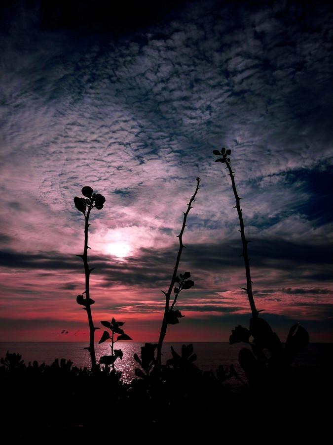 View Photo by Ben S - Pixdaus