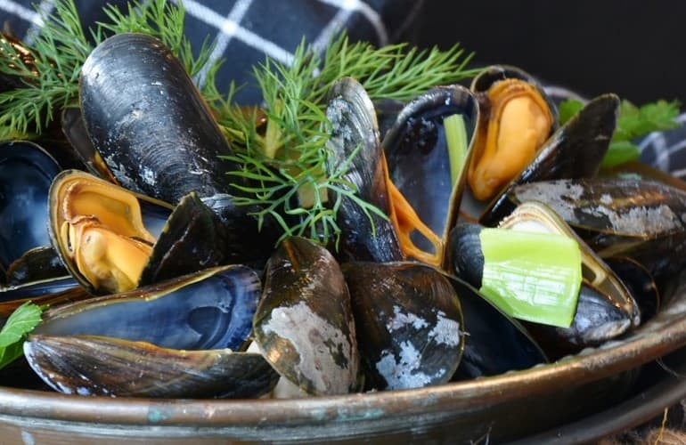 Photo of Green-lipped mussel extract test 2019 | The best extracts in comparison # green lip …