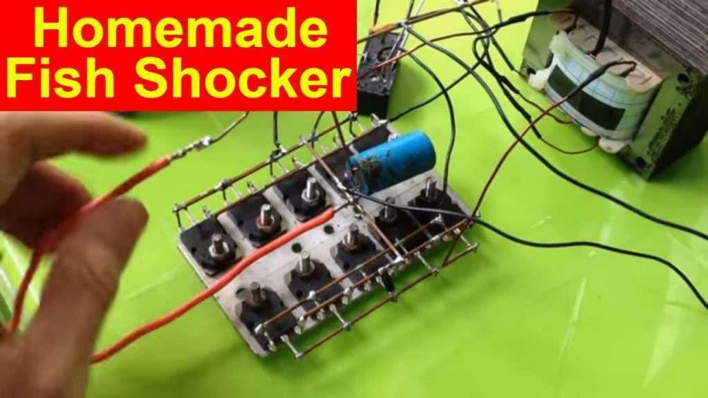 Electrofisher Fish Shocker Eletrico 12 Volts A 220 Volts Oreidocaseiro