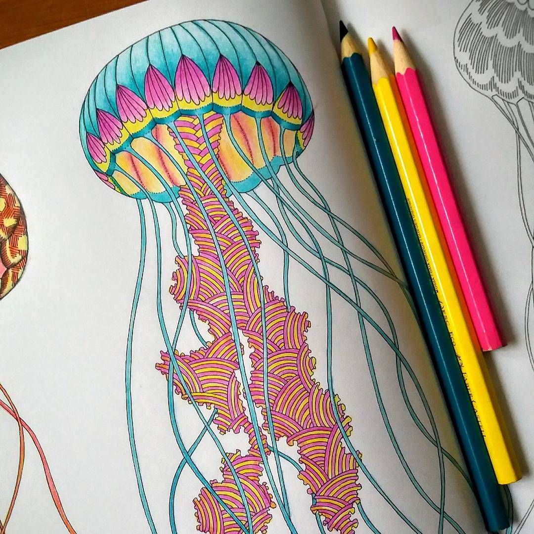 WIP Millie Marotta Animal Kingdom Jellyfish Colorbook Drawing