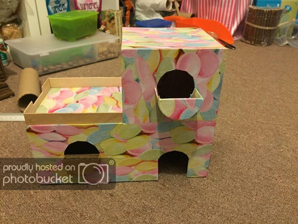 Some New Houses I Made From Cardboard Hamster Diy Diy Hamster