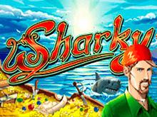 Казино вулкан sharky casino games online to play free