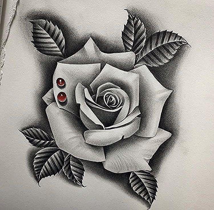 12 Rosas realistas