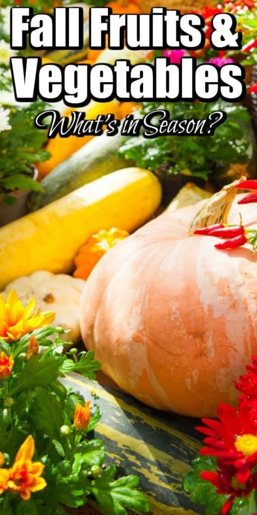 Fall Fruits and Vegetables - What's in Season will help you keep a look out for fresh produce in your local farmers' markets and grocery store! #fallfruits #fallvegetables