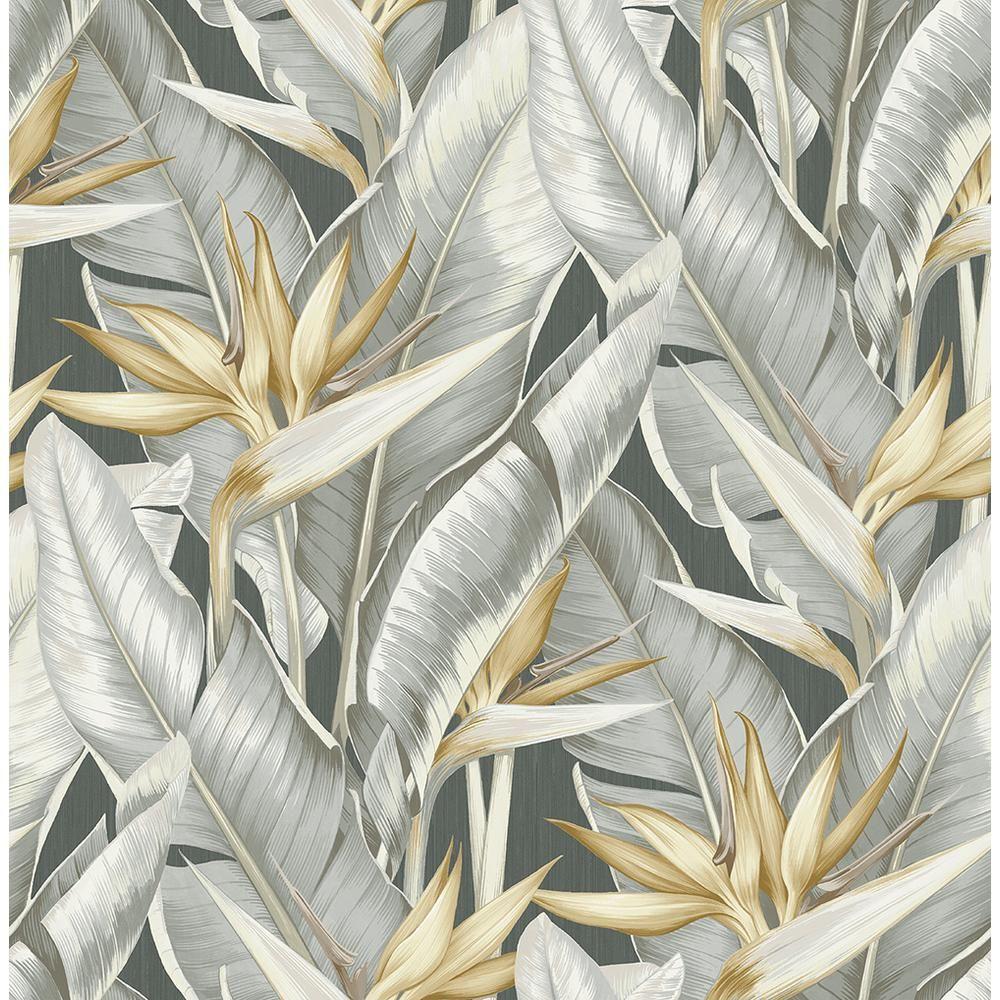 James Arcadia Grey Banana Leaf Wallpaper PS40200