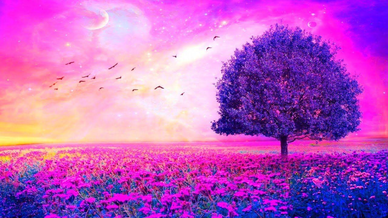 Return To Your Grid Abraham Hicks Purple Flowers Wallpaper Flower Wallpaper Purple Wallpaper