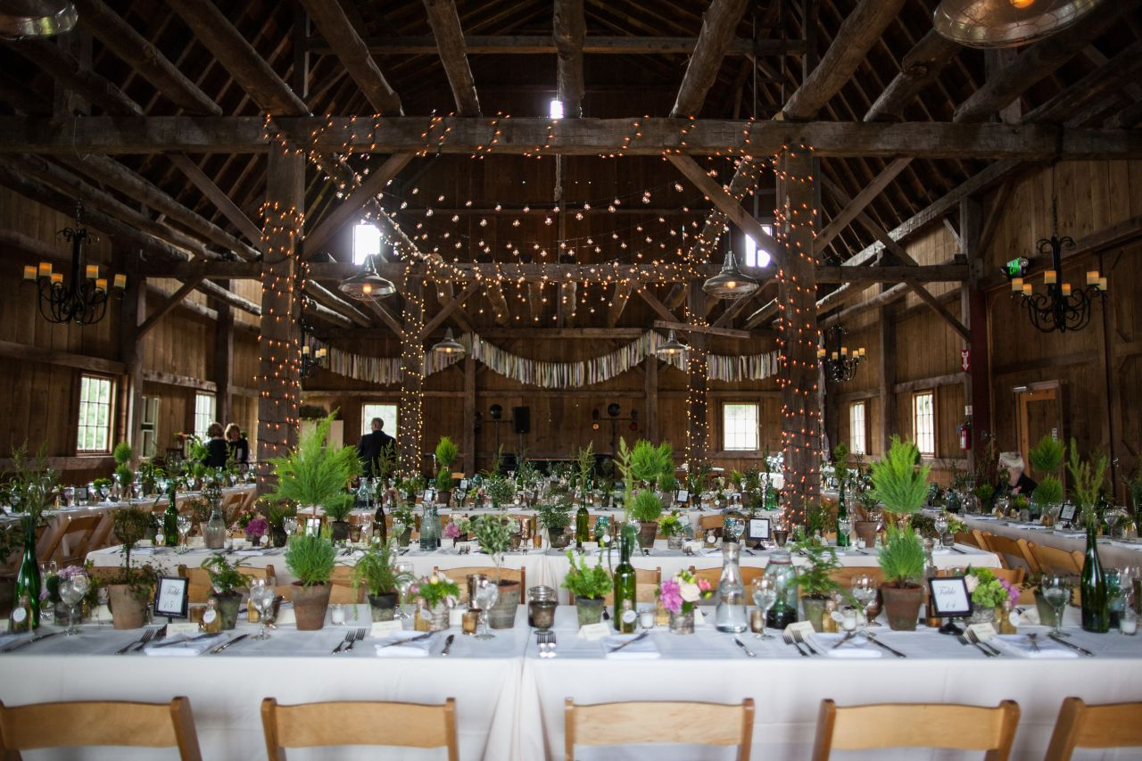 Barn Wedding In Northern Michigan Table Top Topiary Trees In Distressed Pots Traverse City Wedding Michigan Wedding Venues Wedding Inspiration Boards Summer