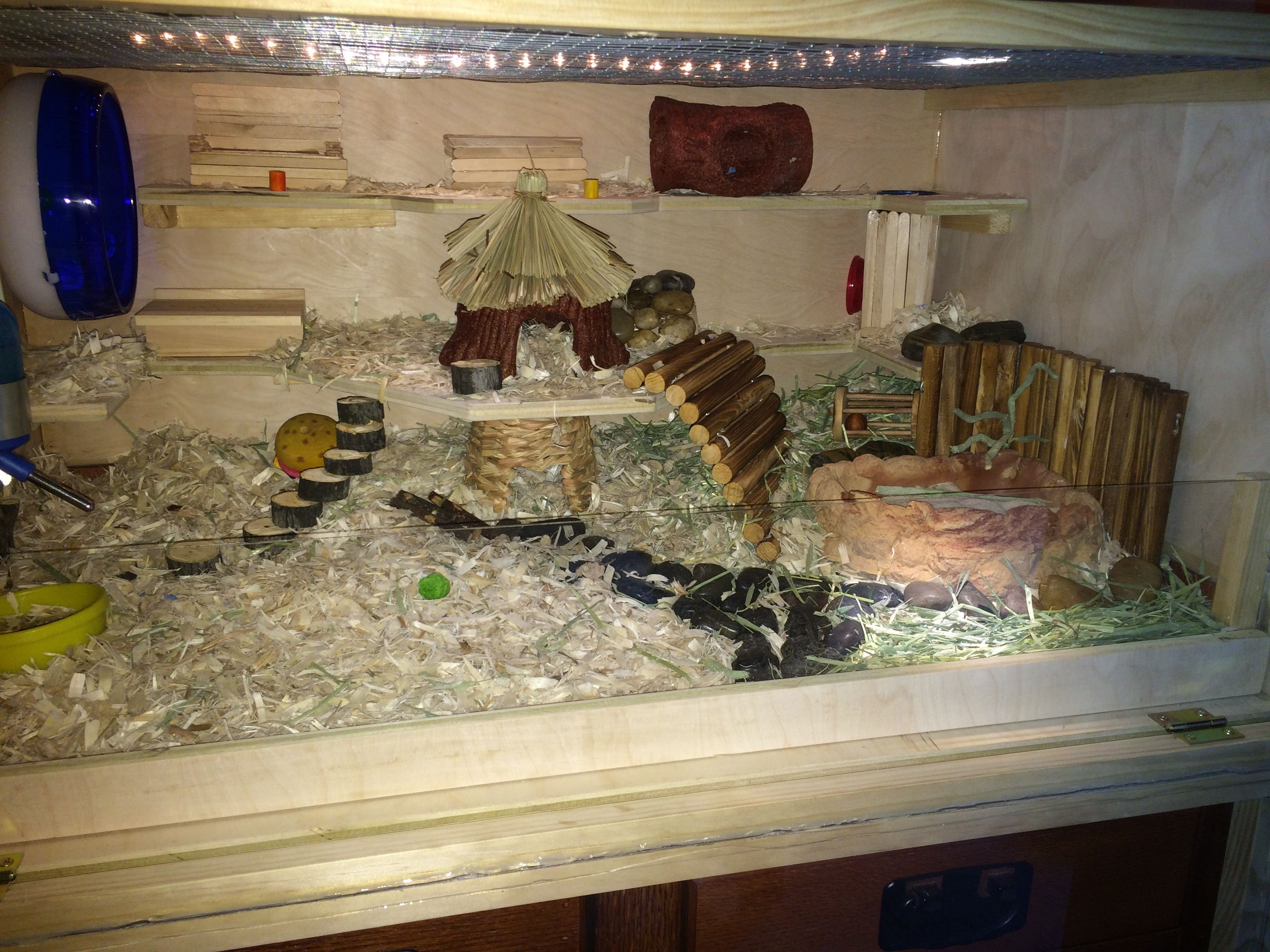 Diy Wood Hamster Cage 2 Door 2 Level Posted In Supplies Accessories My 10 Yr Old Son Just Loves His Ha Hamster Cage Spring Break Kids Hamster Cages