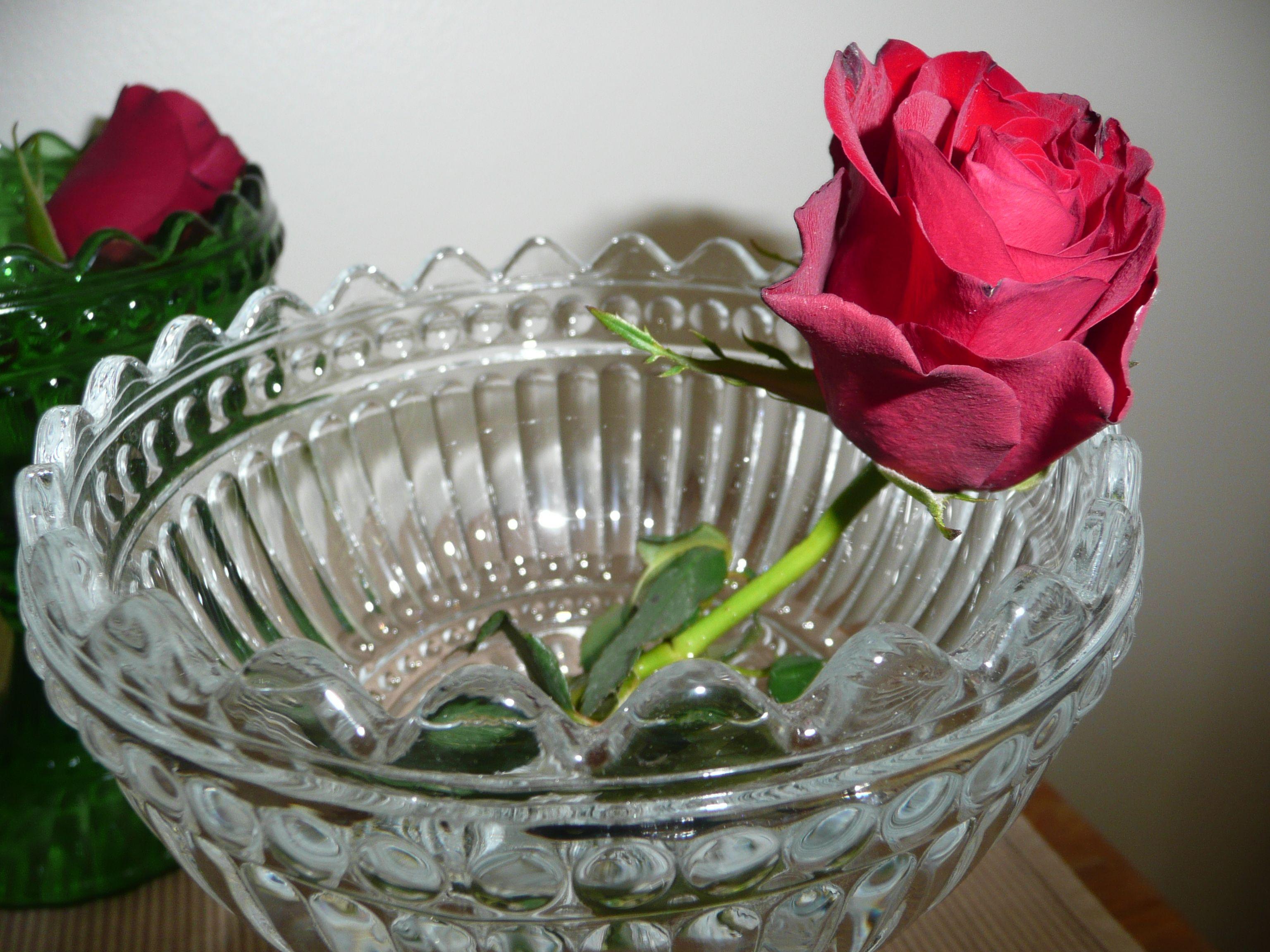 Ruusu Mariskoolissa