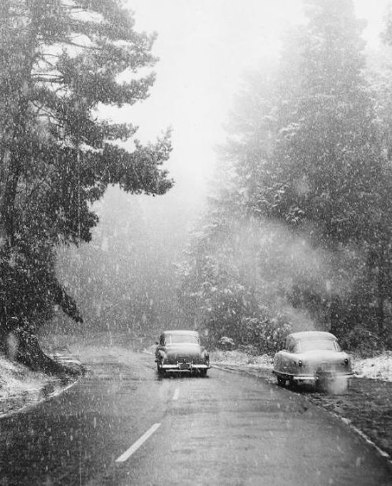 rogerwilkerson:  More snow… San Francisco, 1954, photo by Joe Rosenthal, San Francisco Chronicle. Source  You have to pity the folks up North.