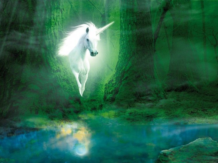 Unicorns Magic Forest Fantasy Poster SelfAdhesive