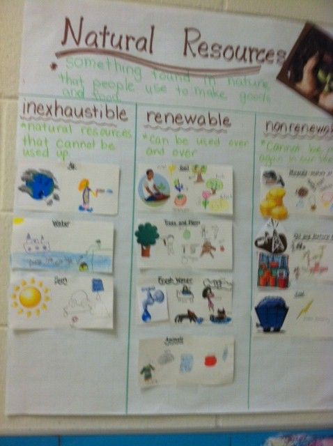 Natural Resources Anchor Chart Science Anchor Charts