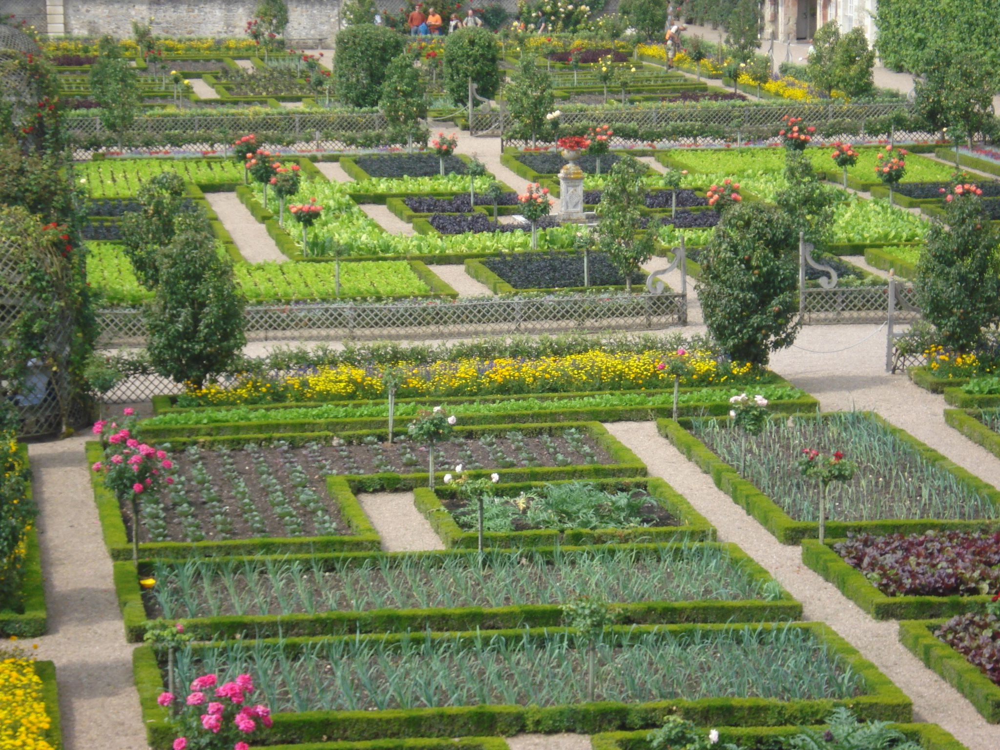 Garden of vegetable parterres chateau de villandry for Garden design versailles