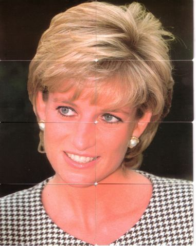 Princess Diana Princess Diana Hair Diana Haircut Princess Diana Pictures