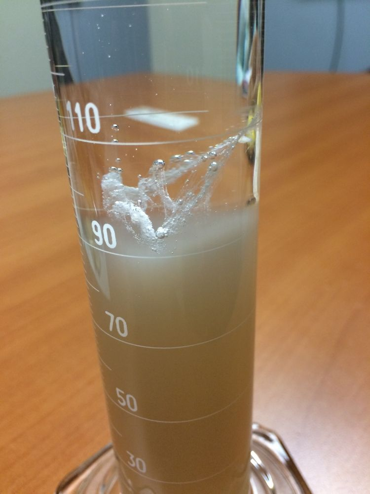conclusion of banana dna extraction lab