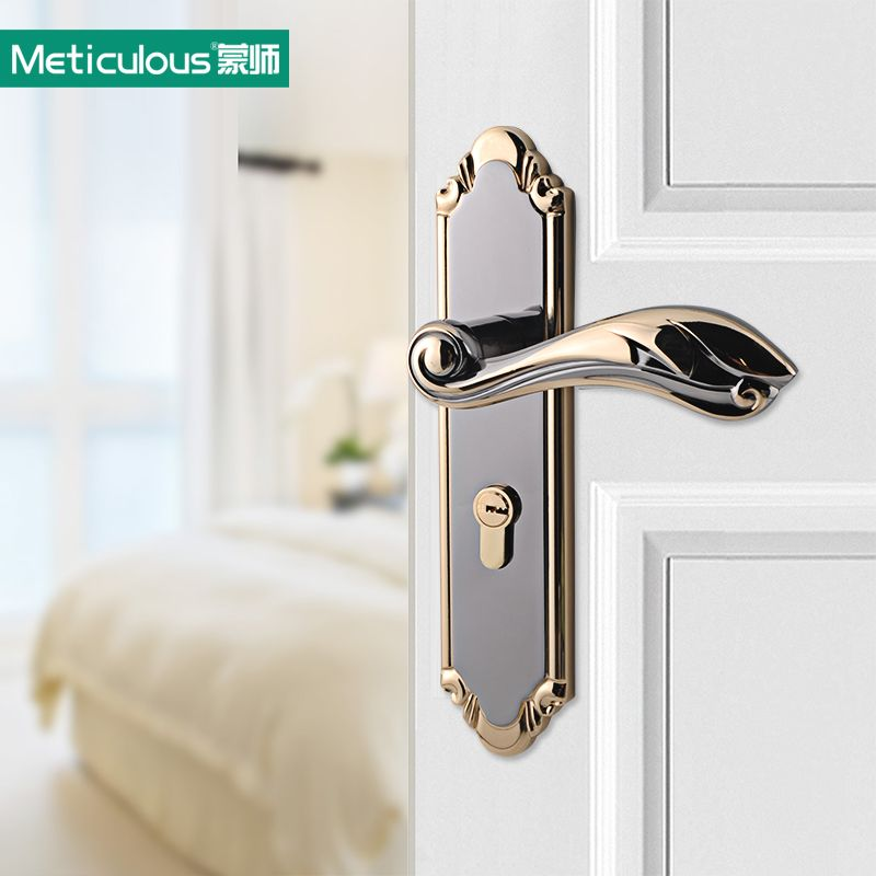 Meticulous Interior door locks Double Security Entry Mortise house