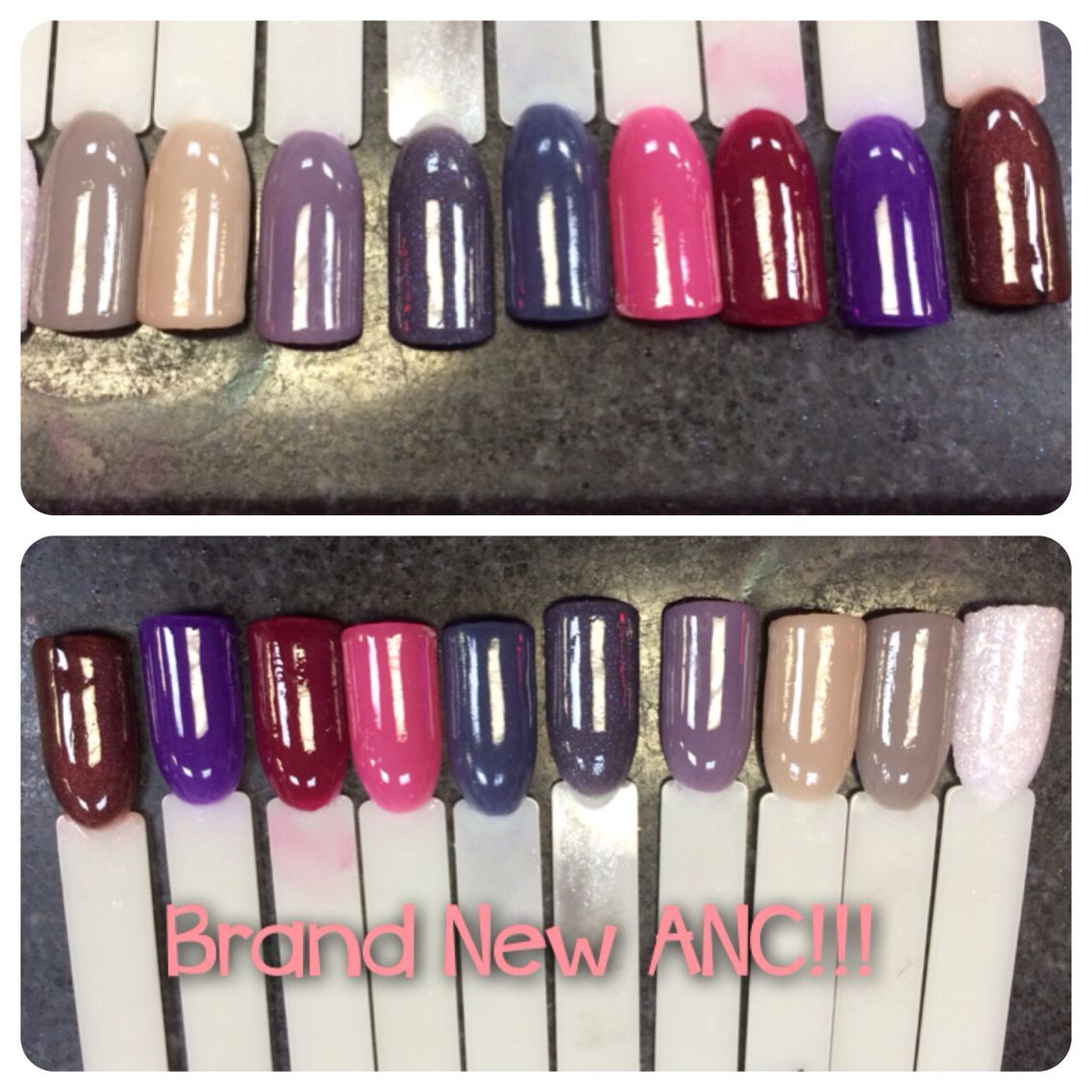 New Fall Anc Colors Conceptorganic Naiipped