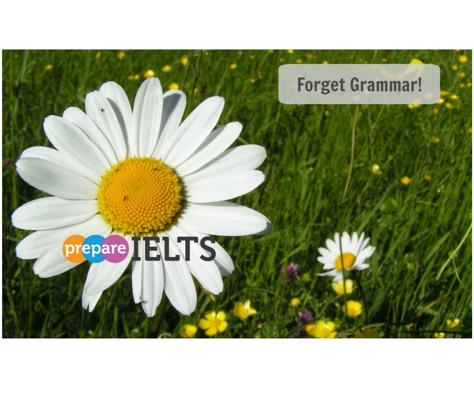 Forget grammar, if you want to be a fluent English speaker! Read my post to find out how!..