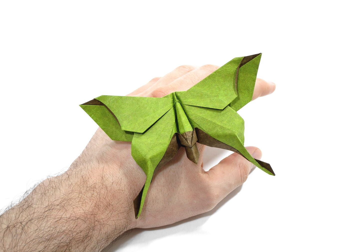 Luna Moth Butterfly Michael Lafosse Origami Origami Butterfly