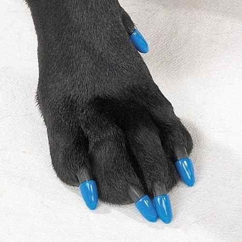 fundas protectoras para uñas de perros + adhesivo  db5ea794f3a