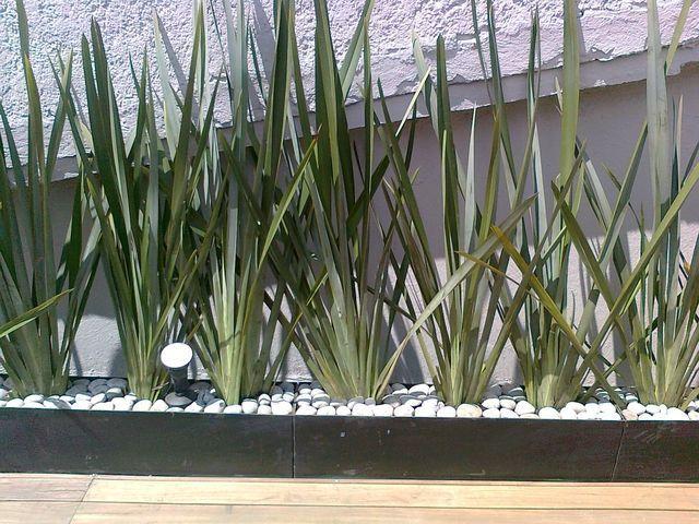 Jardinera de fornio 3 en cada una de 1m garden life en - Plantas jardineras exterior ...