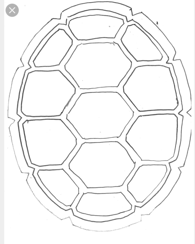 שיריון צב נינג ה Turtle Drawing Turtle Shell Ninja Turtle Shells