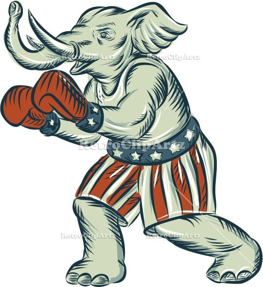 Republican Elephant Boxer Mascot Isolated Etching Vector Stock Illustration. Etching engraving handmade style illustration of an American Republican GOP elephant boxer mascot boxing with boxing gloves wearing USA stars and stripes flag shorts viewed from side set on isolated white background. #etchingillustration #RepublicanElephantBoxer
