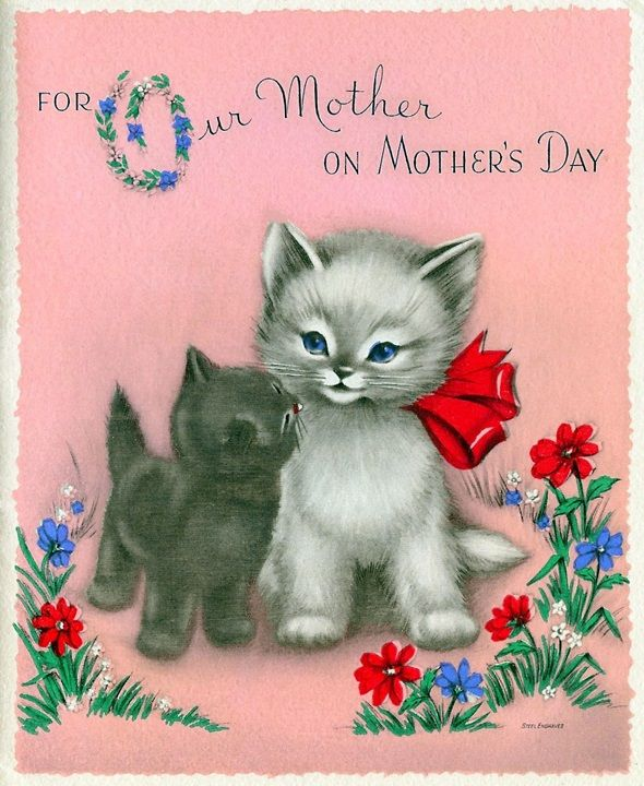 Happy Mothers Day Cat Images