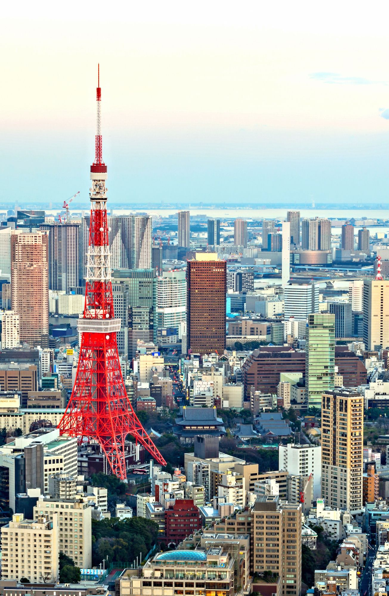 Best View of Tokyo Mori tower, Tokyo city view, Roppongi
