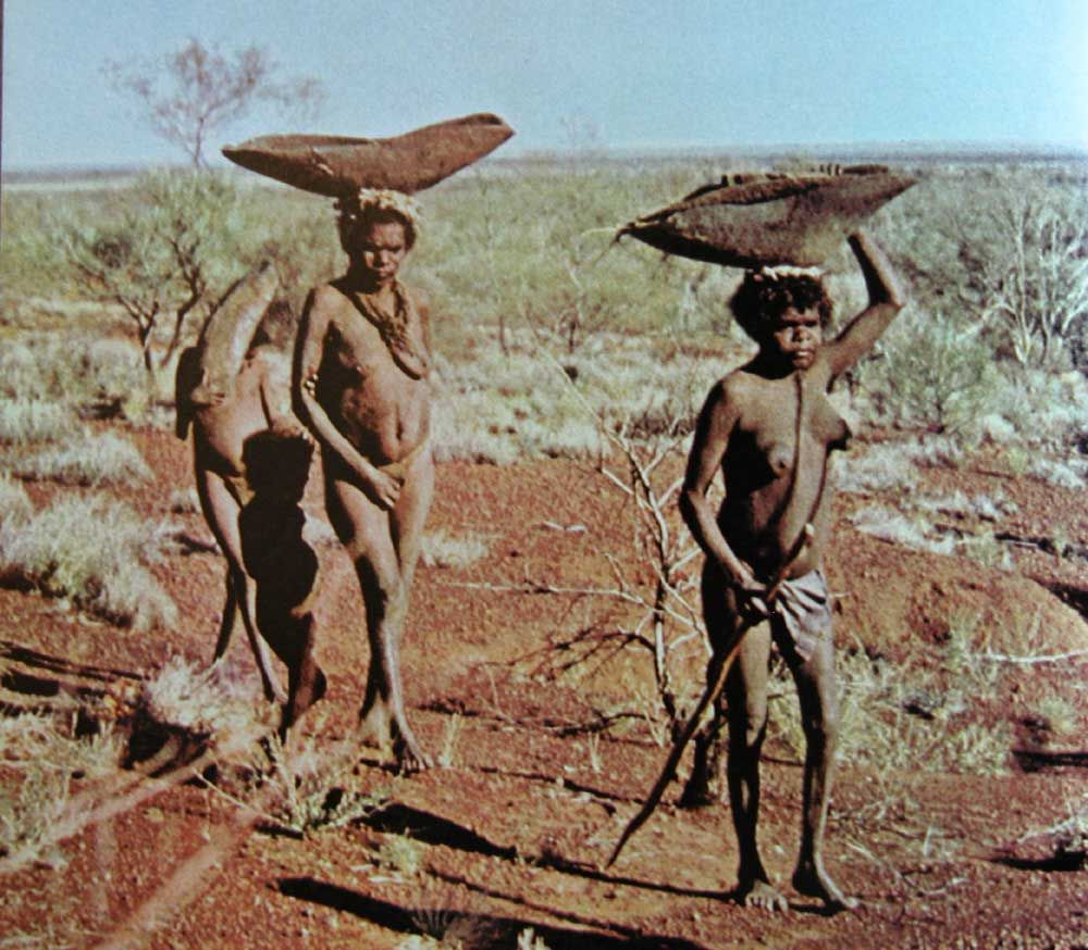 the white man and the australian aborigines The aboriginal culture of australia, includes a large number of tribes inhabiting the oceanic continent before the arrival of the white man but all that rich culture is doomed to survive in.