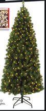 7' Green Tree from Walmart Canada $88.00