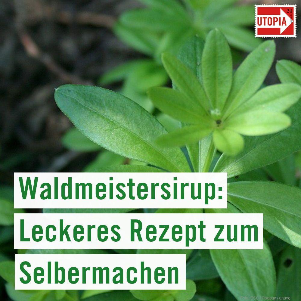 Waldmeisterlimonade