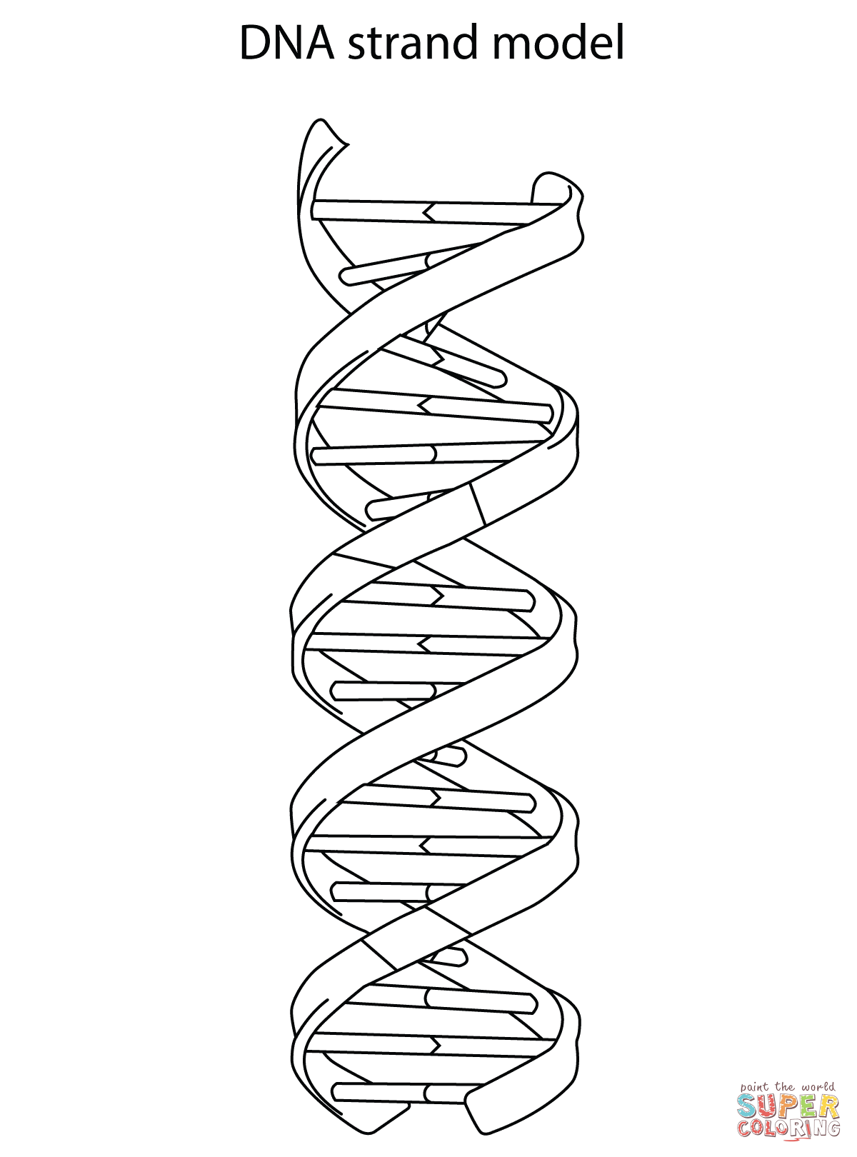 Dna Strand Model Coloring Page Free Printable Coloring Pages Dna Tattoo Dna Art Dna Drawing
