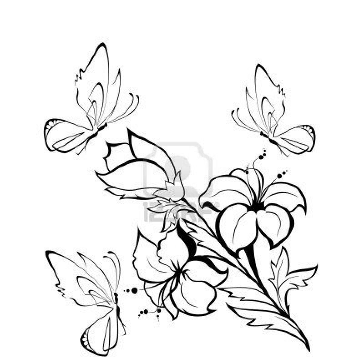 Dibujos de flores | Dibujos para pintar de rosas | Fondos de ...