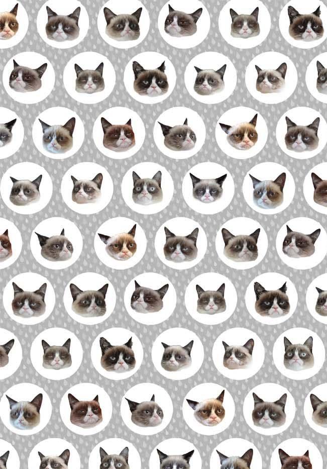 Grumpy Cat A Grumpy Book Kindle Edition By Grumpy Cat Crafts Hobbies Home Kindle Ebooks Amazon Com Grumpy Cat Cat Wallpaper Grumpy Cat Book