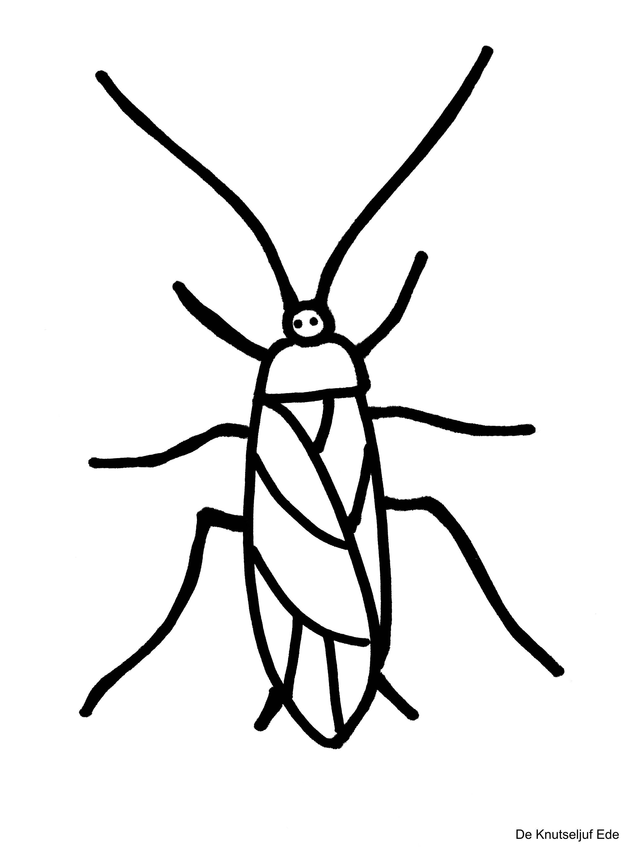 Kleurplaten Kriebelbeestjes Insekten Kleurplaat Kleurplaten Deknutseljuf Sprinkhaan De Knutseljuf Ede Insect Knutselen Insecten Kleurplaten