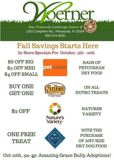 More Fall Savings Here Are This Week S In Store Specials Here