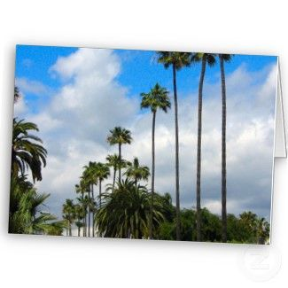 Palm trees and sky greeting cards nature cards flowers and palm trees and sky greeting cards nature cards m4hsunfo