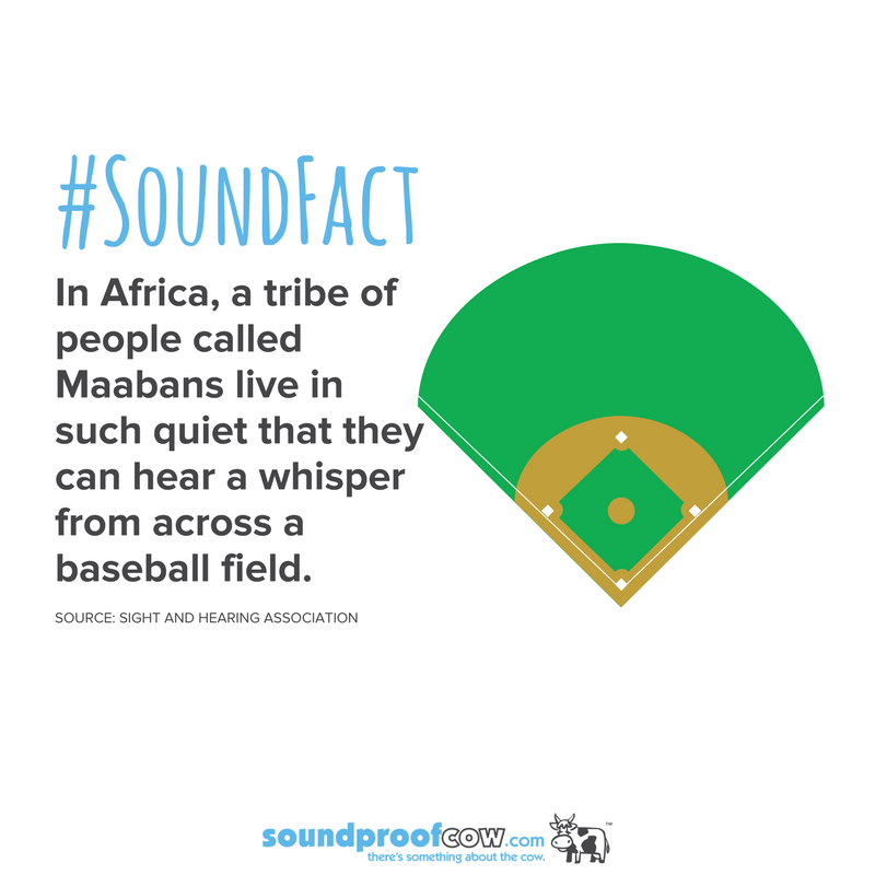 SoundFact: In Africa, a tribe of people called Maabans live in such ...